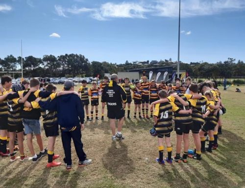 A great game of sportsmanship yesterday in the U13 Green zone Wahroonga Tigers v…