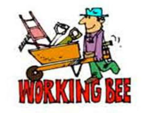 Just a reminder about our working bee tomorrow starting 9am. Please join us for …