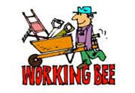 Just a reminder about our working bee tomorrow starting 9am. Please join us for ...