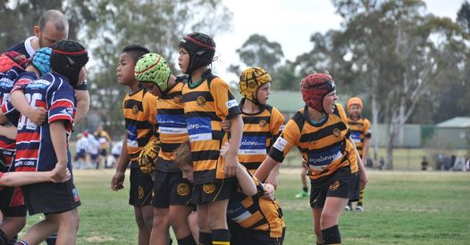 Narrabeen Tigers Junior Rugby Club is now on WhatsApp.